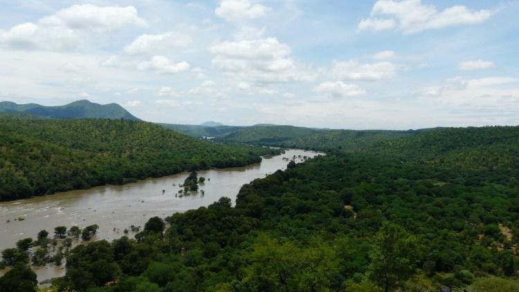 The Cauvery River